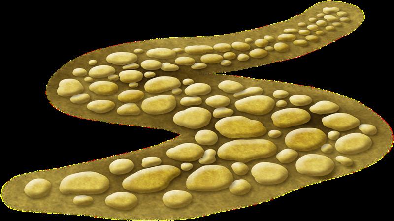 Im genes infantiles camino de piedras - Dibujos de piedras ...