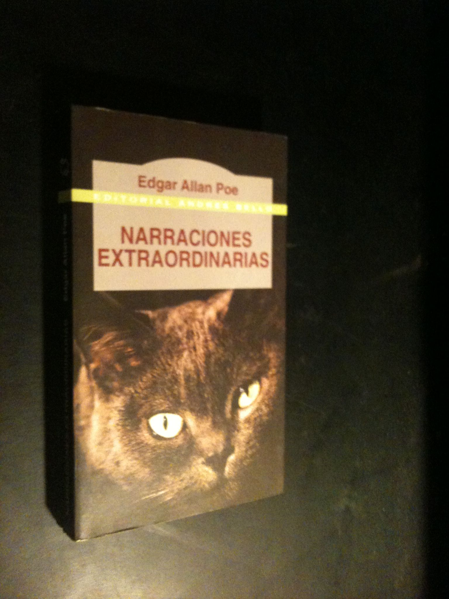 Poe,Edgar Allan Narraciones+Extraordinarias+/+Extraordinary+Stories BOOK